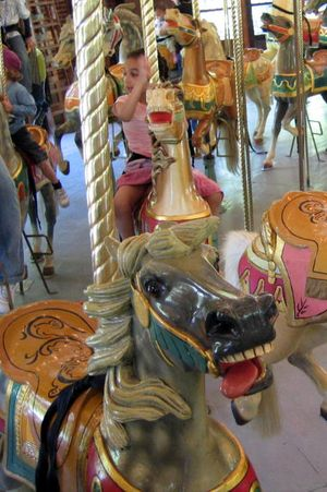 Pp carousel May08