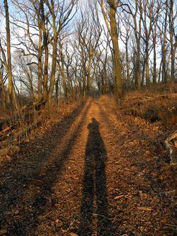 Solstice shadow 12-22-11