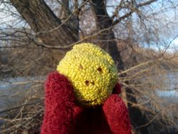 Osage orange held 1-2-12