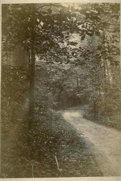 Lovers lane 1887