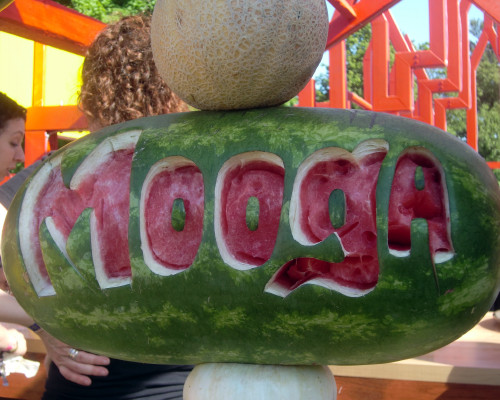 GM melon 5-19-12