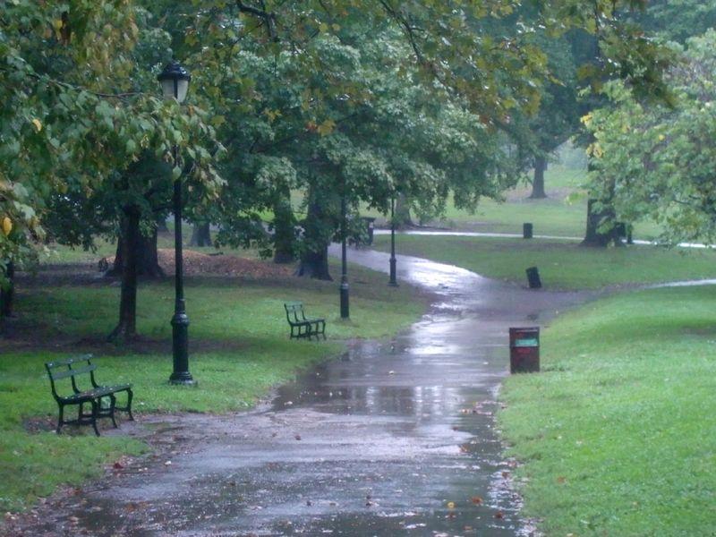Rain empty 9-27-12