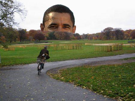 Obamarise