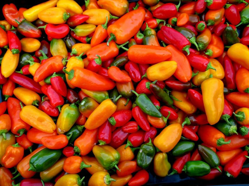 Peppers GM 10-26-13