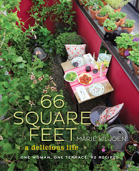 66 square feet book cover