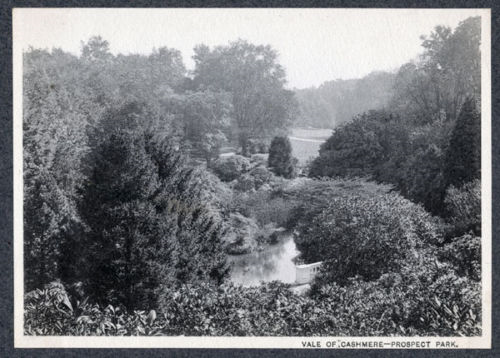 Vale 1903 print