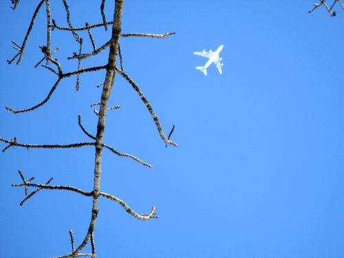 High plane 1-29-14