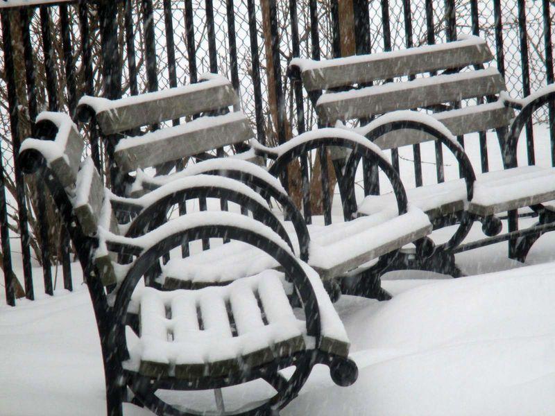 Playground benches 3-2-15