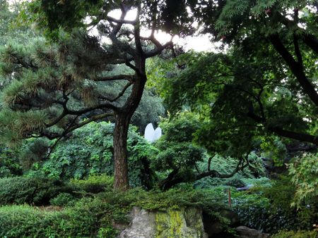 Japanese Garden Hill and pond 9-9-15
