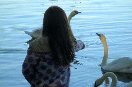 Tashlich swans cu