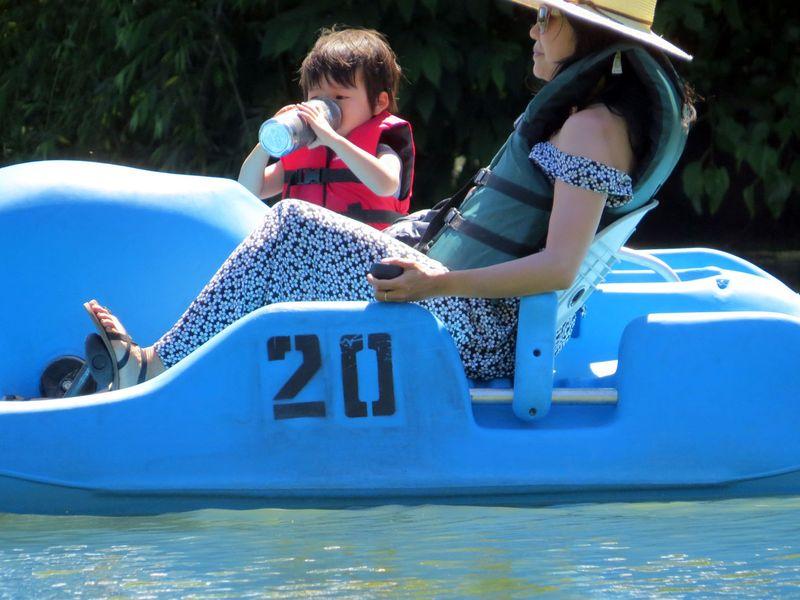 Paddleboat mom 6-10-16