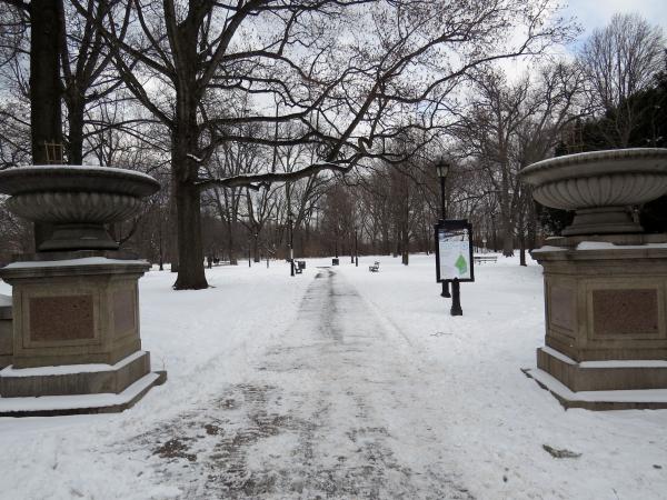 Treecycling winter entrance
