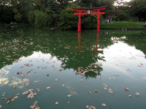 Japanese Garden Torii 9-9-15