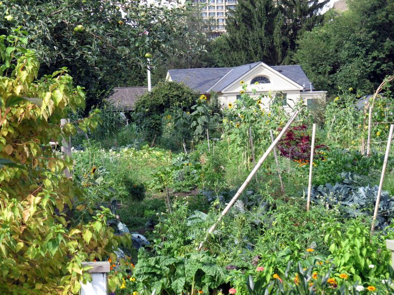 BBG Children's Garden