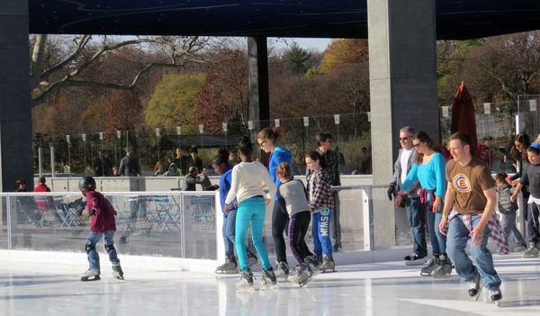 LS onto the ice