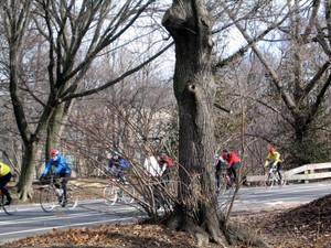 Cyclists_125