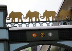 Pp_elephants_detail_222